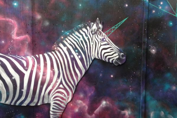 Cosmic Zebra & The Indoor Tree